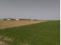 Poljoprivredno zemljište, Prodaja, Petrijanec, Nova Ves Petrijanečka